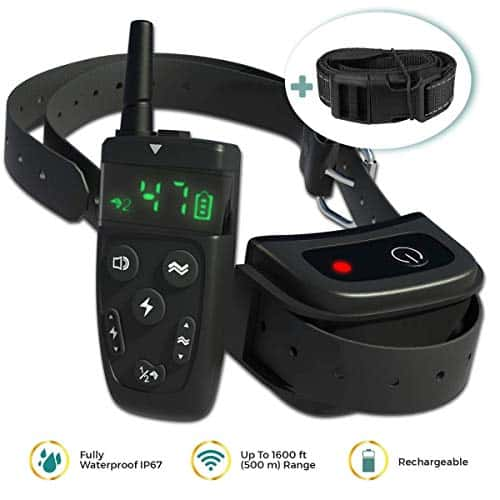 Dog Training Collar with Remote