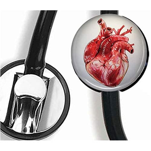 Heart Nurse Doctor Stethoscope